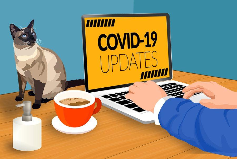 epidemie_covid-19